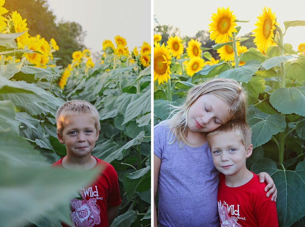 Sunflower Fields Kansas City Photographer