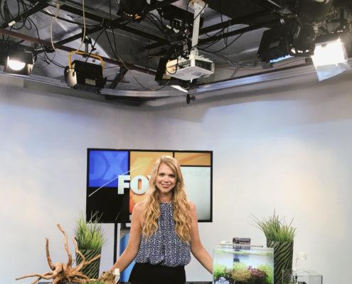 Fox 4 Aquarium Segment
